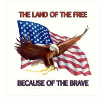 THE LAND OF THE FREE BECAUSE OF THE BRAVE Art Print