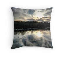 Insignificance Throw Pillow