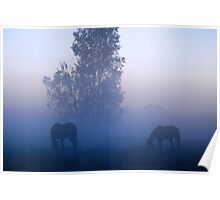 Broodmares, Blue mist Poster
