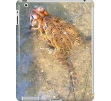 A Male and Female common toad iPad Case/Skin