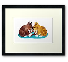 Nose to Nose over the Teddy Bear Framed Print