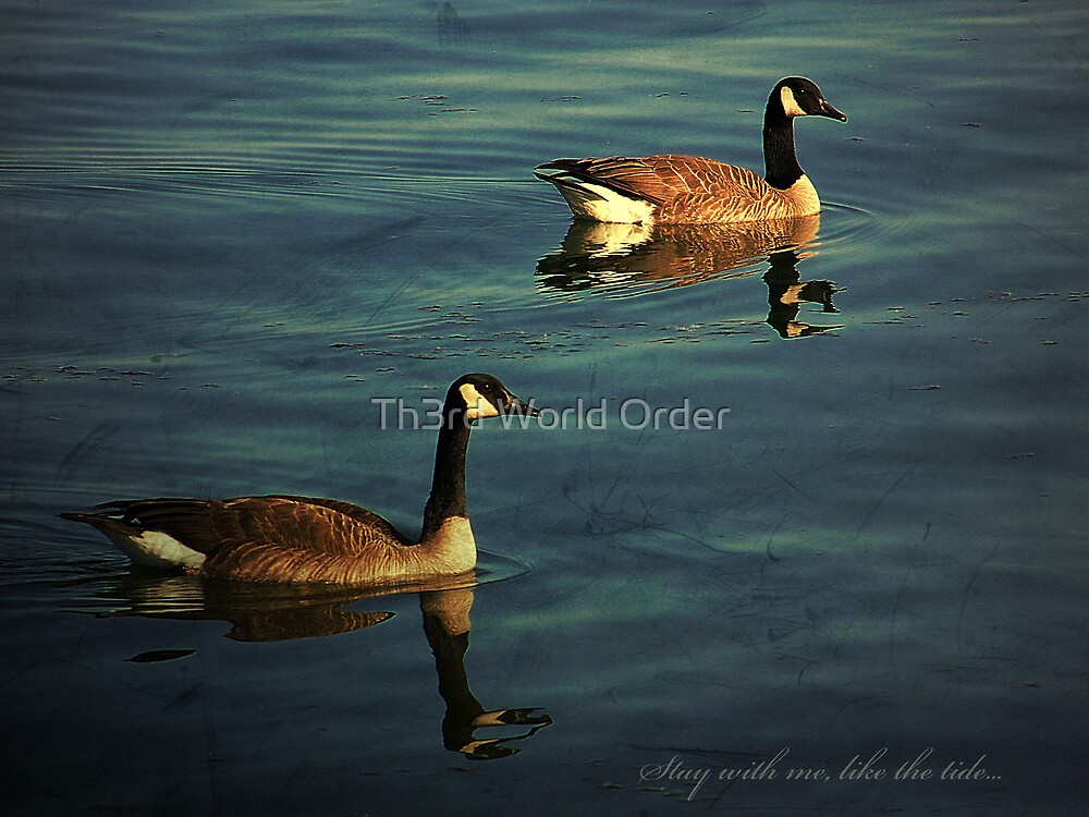 Stay with me, like the tide... by Th3rd World Order