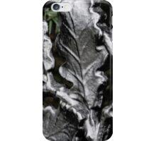 Blarney Castle Wrought Iron iPhone Case/Skin