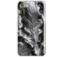 Blarney Castle Wrought Iron iPhone Case/Skin