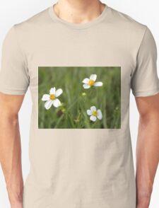 Small white flowers Unisex T-Shirt