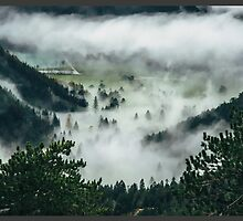 Fog Overridden Valley by Earth-Warrior