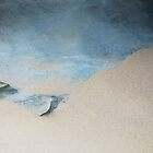 Blue Stones in Nelson Bay.......... by Imi Koetz