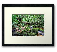 St. Columba Falls Reserve Creek Framed Print