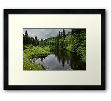 Forest Lake - Charlevoix, Quebec, Canada Framed Print