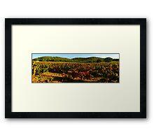 Provence vineyard in autumn Framed Print