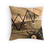 Ancient wings -7- Throw Pillow