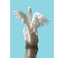 White Duck Flapping Wings on Water Vector Photographic Print