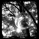 Orbit by Kitsmumma