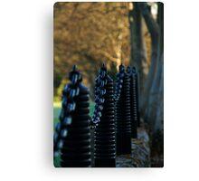 Chain Gang...... Canvas Print
