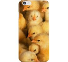 Clutch of Yellow Fluffy Chicks iPhone Case/Skin
