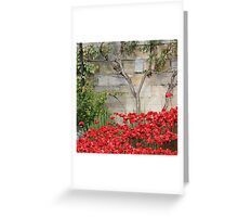 Blood swept Lands and Seas of red #3 Greeting Card