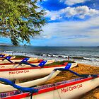 Maui Canoe Club by DJ Florek