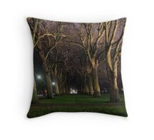 London UK Hyde park, lane of plane (Platanus) trees at night. Throw Pillow
