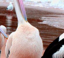 Pelican 5.20 Sticker