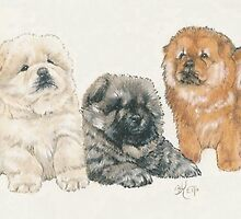 Chow Chow Puppies by BarbBarcikKeith