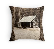 Framing The Carter Shields Place Throw Pillow