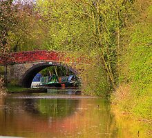 Bridge 21 - Ashby Canal by SimplyScene