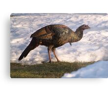 Size Makes Up For The Looks. Metal Print