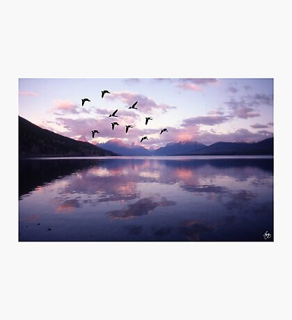 Geese Over Glacier Lake Photographic Print