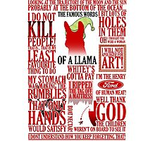 The Famous Words Of A Llama Photographic Print