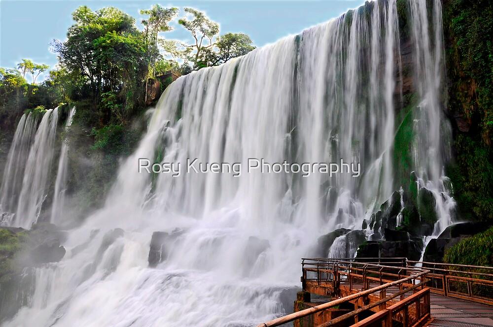 Bosetti Fall  by Rosy Kueng Photography