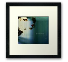 Or it's a cat Framed Print