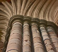 Cathedral by Neilm
