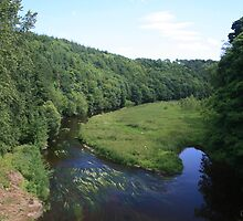 River Near Paxton, Scottish Borders by Tasha  Blackmore