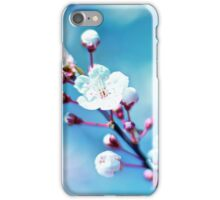 A taste of spring iPhone Case/Skin