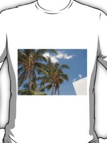 Palm tree in St Maarten T-Shirt