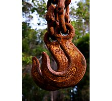 Crane hooks Photographic Print