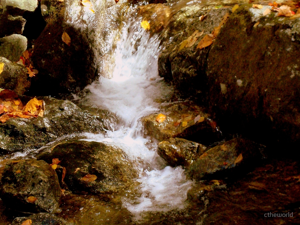Mini Waterfall - A Brook at Crabtree Falls  by ctheworld