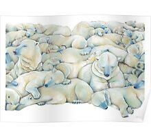 Polar Wall Poster