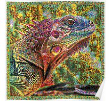 Colorful Lizard Poster