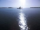 Island In The Sun by Allen Lucas