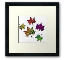 Grow Ripe Opts West Framed Print