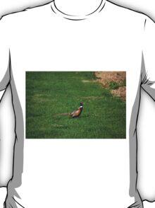 Pheasant in grass T-Shirt