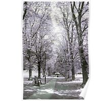 Chippenham Park in Infrared Poster