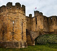 Warkworth Castle in springtime by Violaman