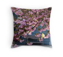 SPRING Cherry Blossoms in bountiful measure Throw Pillow