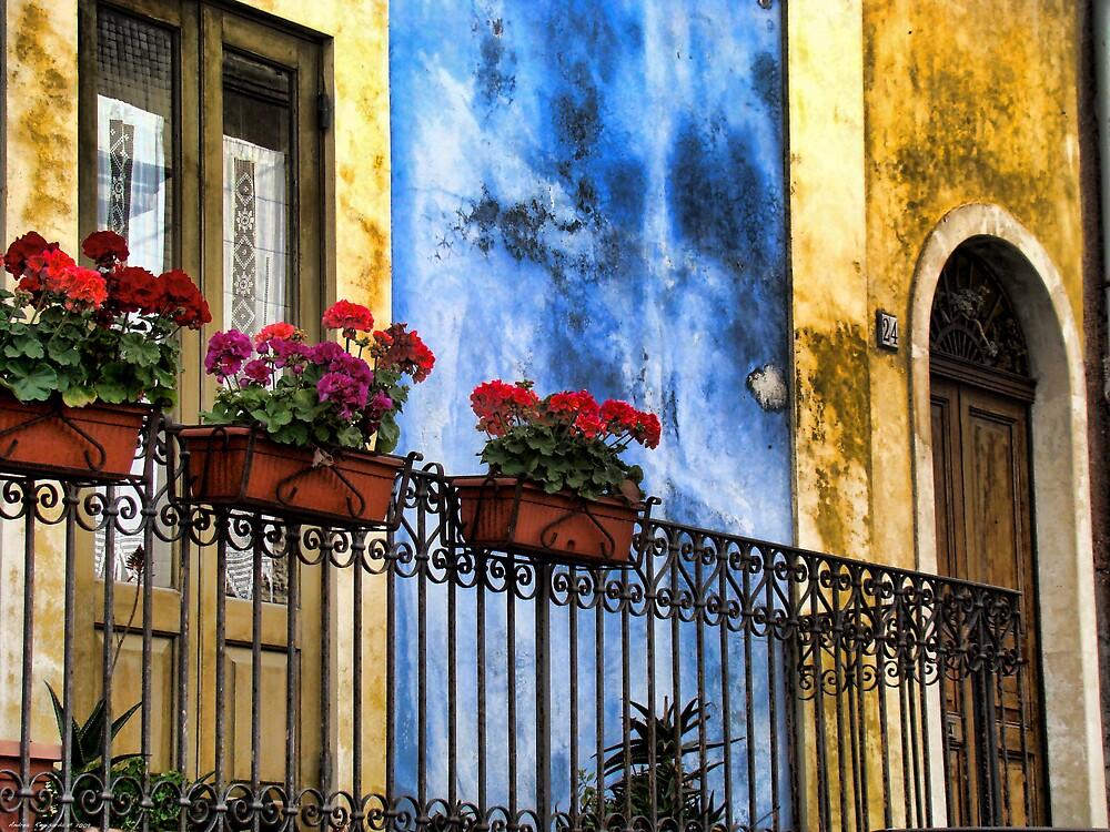 balcone fiorito by Andrea Rapisarda