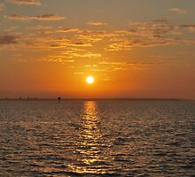 Sanibel Island Sunset by sarahshanely