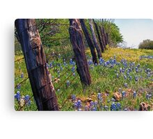 Flowers and Fence Posts Canvas Print