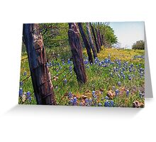 Flowers and Fence Posts Greeting Card