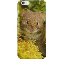 """""""Are you Lichen what you see?"""" iPhone Case/Skin"""